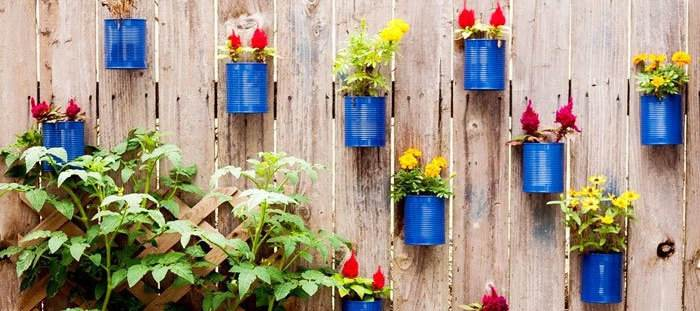 деревянный-забор-сад-в-банках
