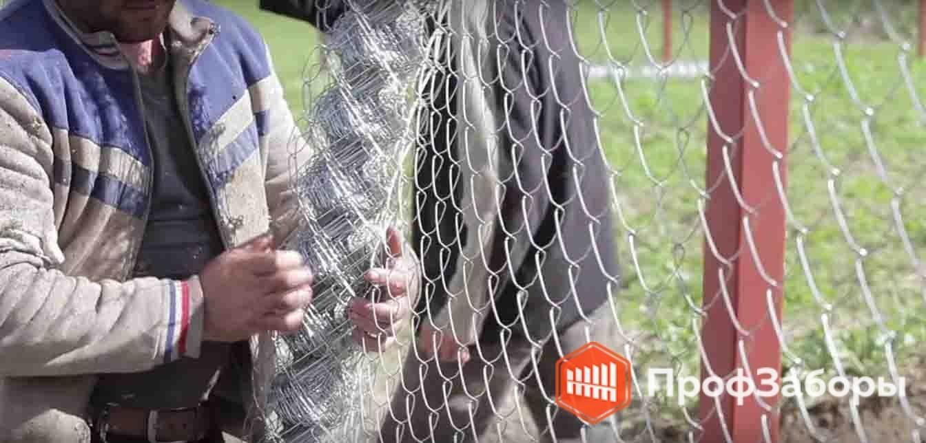 Заборы Из сетки-рабицы - Пушкинский район. Фото 3