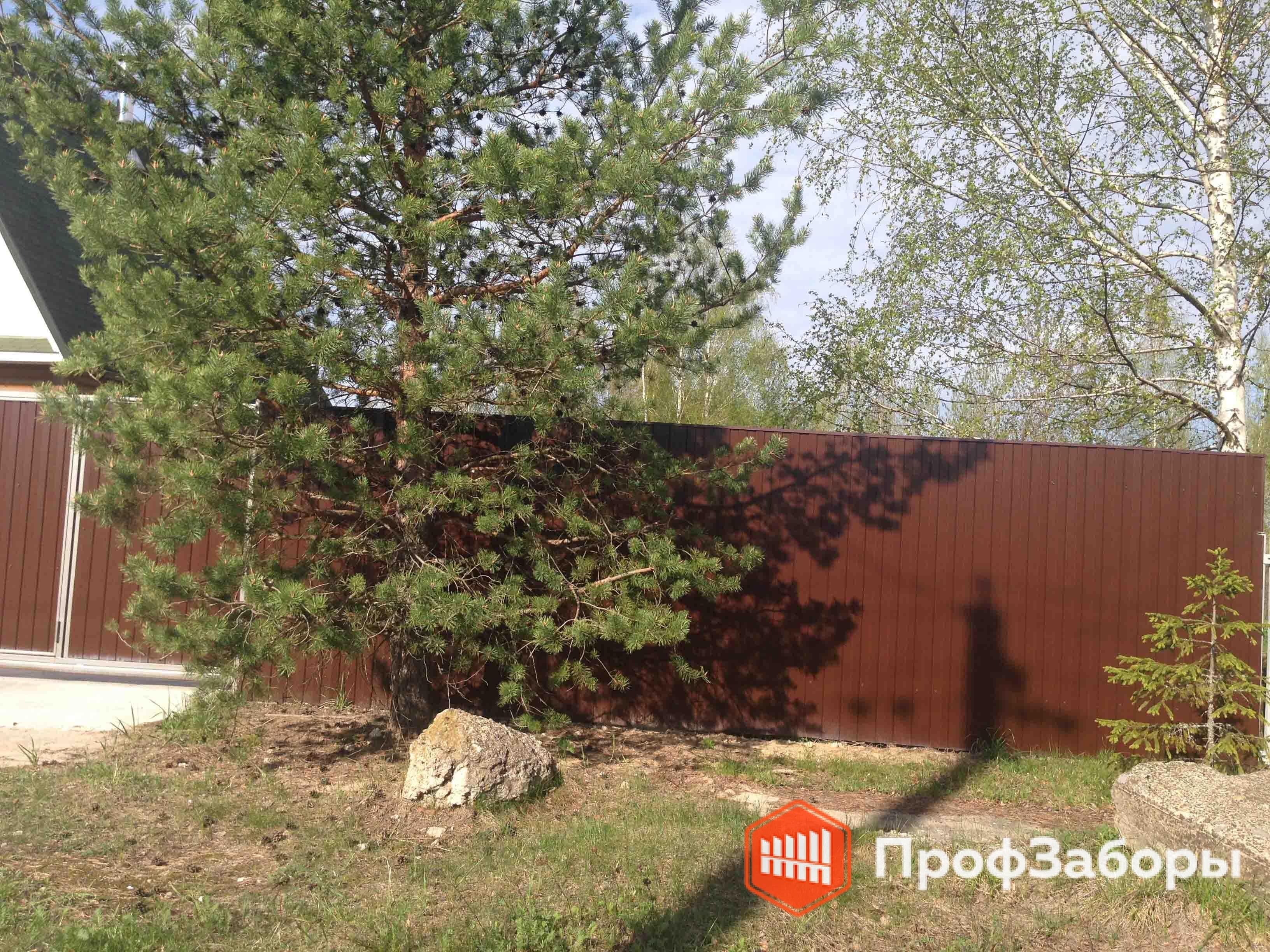 Заборы Из профнастила  - Можайский район. Фото 2