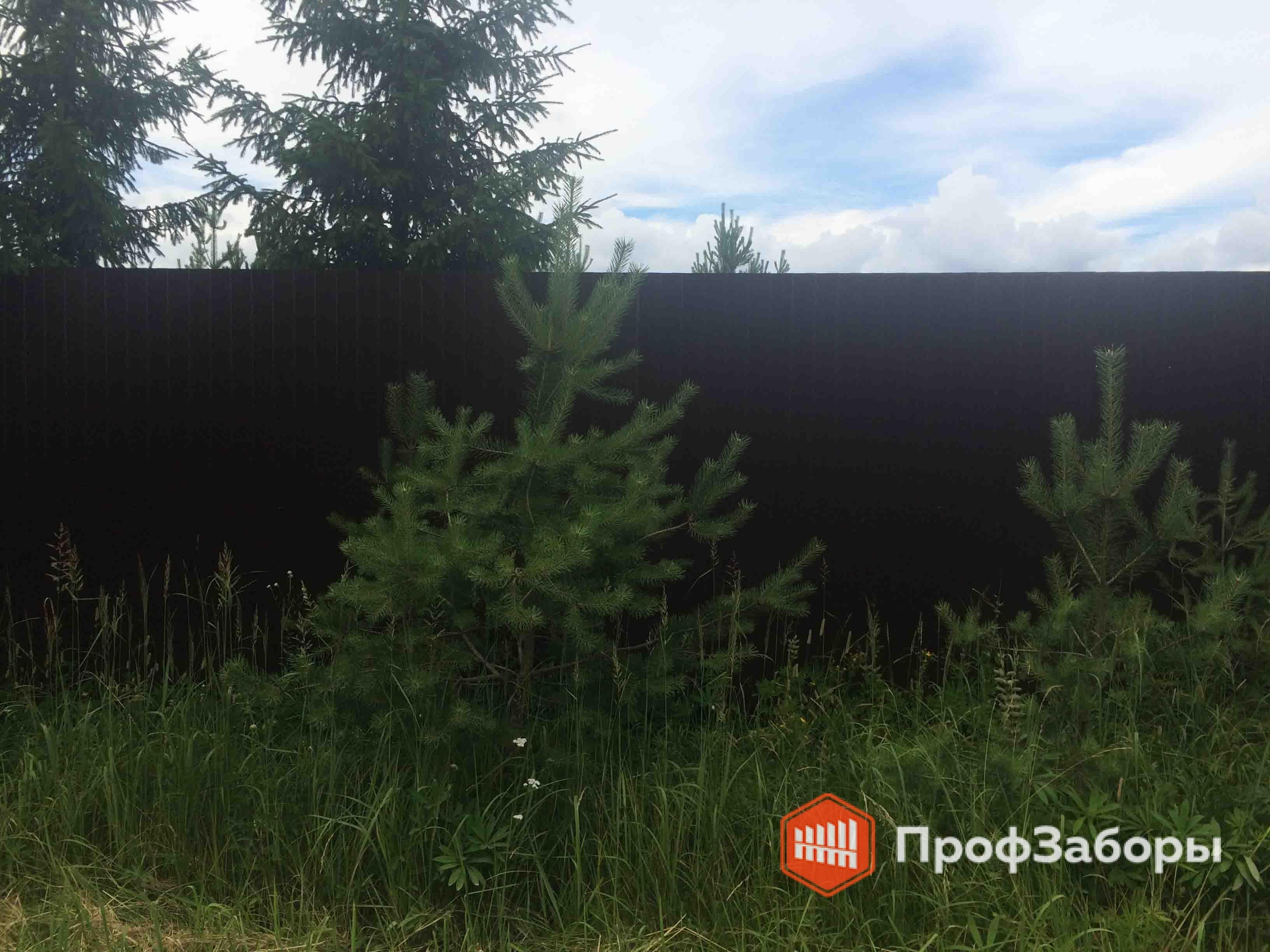 Заборы Из профнастила  - Городской округ Егорьевск. Фото 3