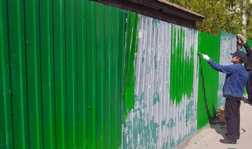 Как покрасить забор из профнастила своими руками: выбор краски и особенности работы