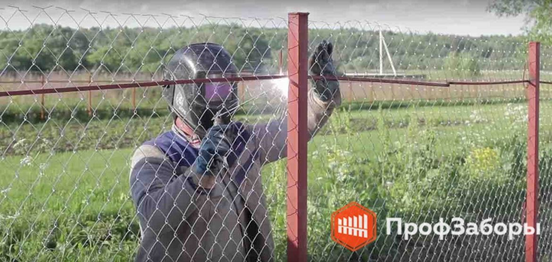 Заборы Из сетки-рабицы - Пушкинский район. Фото 1