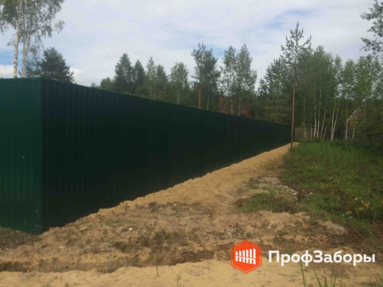Заборы Из профнастила  - Пушкинский район. Фото 1