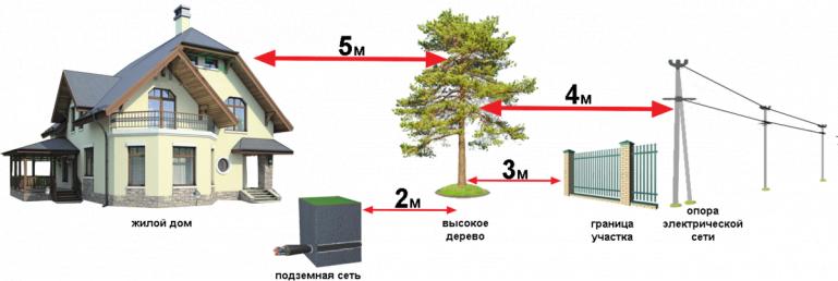 СНИП и нормы посадки деревьев от забора